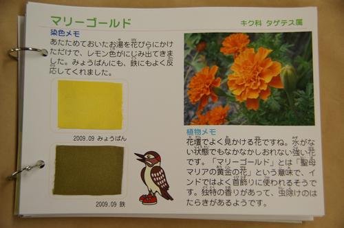 20090919_3