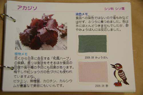 20090919_4
