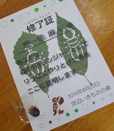 20100820_1101